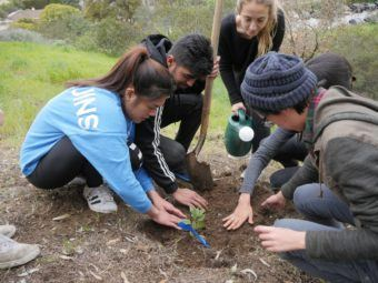 sage hill gets a sign and 70 new native plants!
