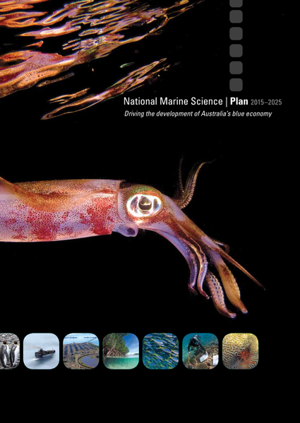 National Marine Science Plan 2015-2025: Driving the development of Australia's blue economy