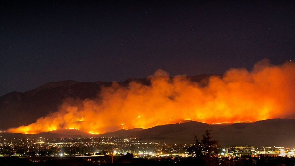 wildfires should be considered a top threat to survival of species