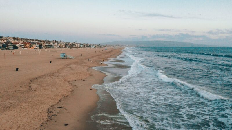 covering the coast: narrating ddt pollution and other ca coastal stories