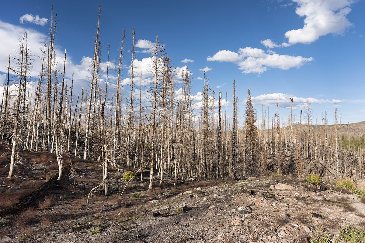 reduced humidity increases wildfire threat in southwest u.s.