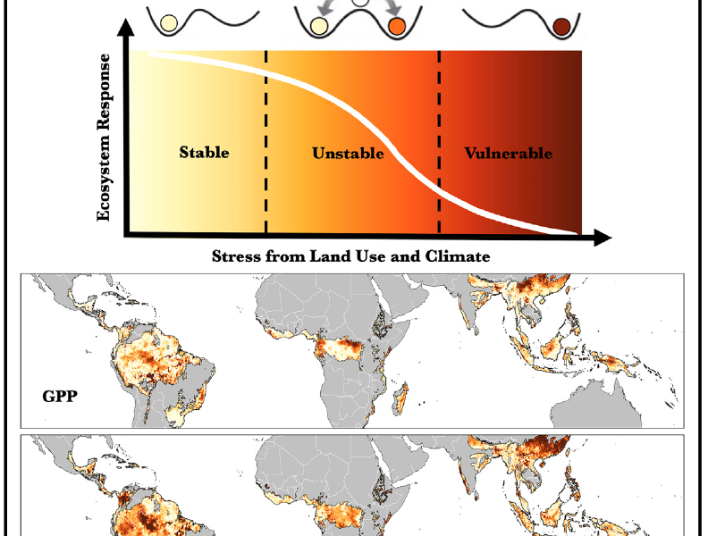 Saatchi-Detecting-Vulnerability-of-tropical-rainforests