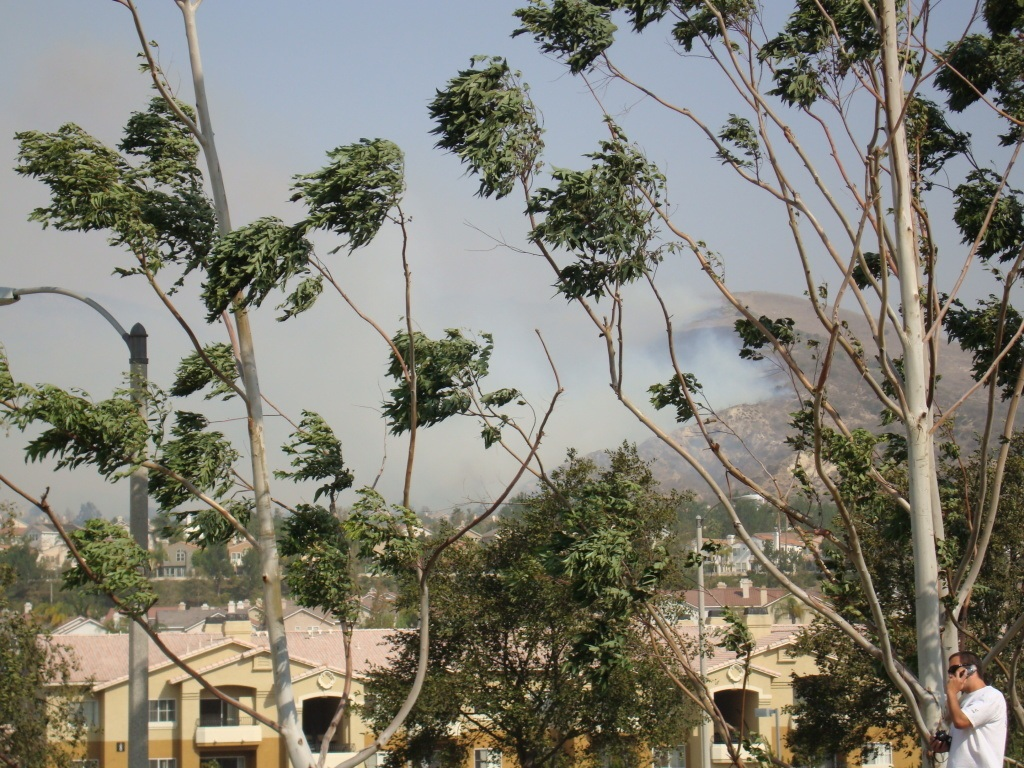 the santa ana winds: a cultural and destructive force in southern california