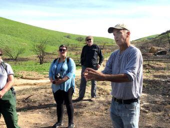 ucla researchers studying how the woolsey fire affects plant and animal recovery
