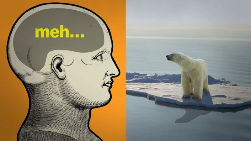 experts come up with surprising solutions to climate change in new uc/vox video series