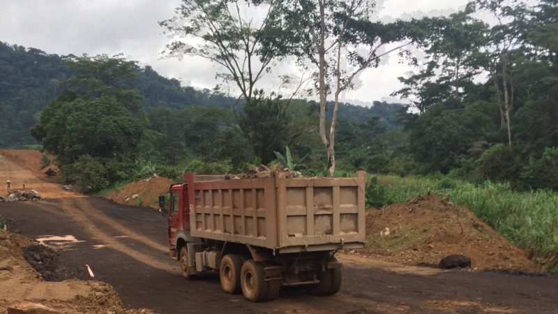 furniture from china contributes to deforestation in central africa