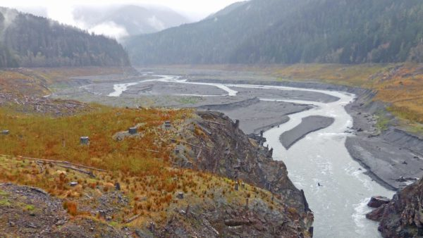 why the world's rivers are losing sediment and why it matters