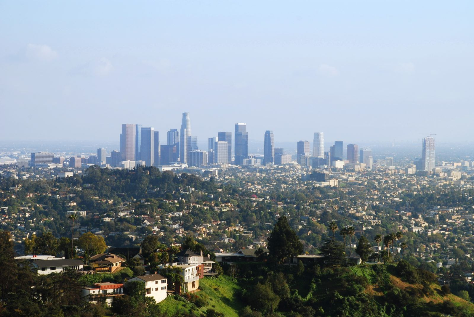 Griffith Park View