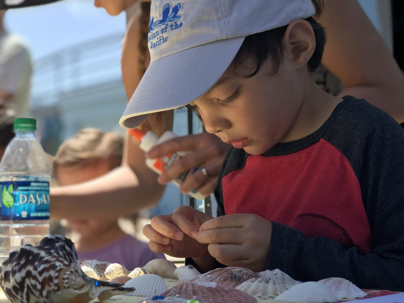 critter crafting and ocean acidification education with the turning the tides practicum team