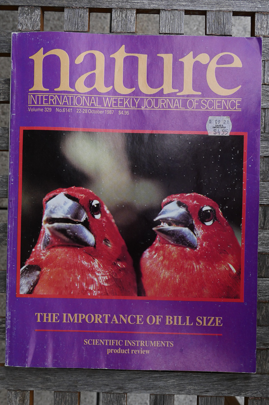 October 1987 cover of Nature, showing different beak sizes in seedcrackers. | Image by Nicki Aviel/UCLA.