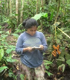 research in the chocó rainforest