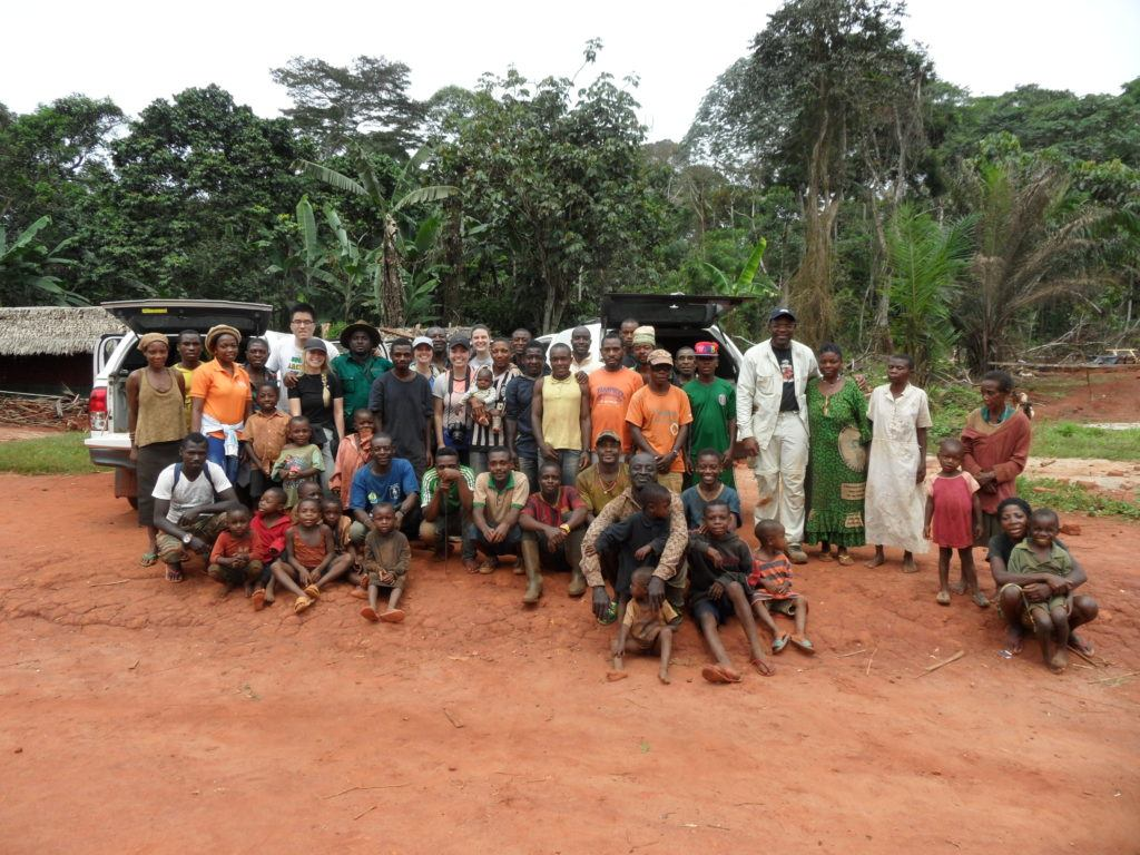developing a model for sustainable ebony production and logging in cameroon