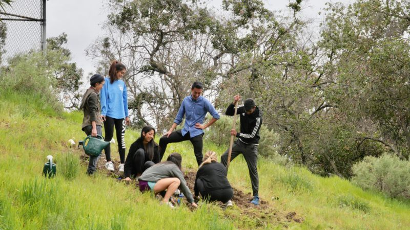 biodiversity restoration: giving sage hill a physical, educational, and digital presence
