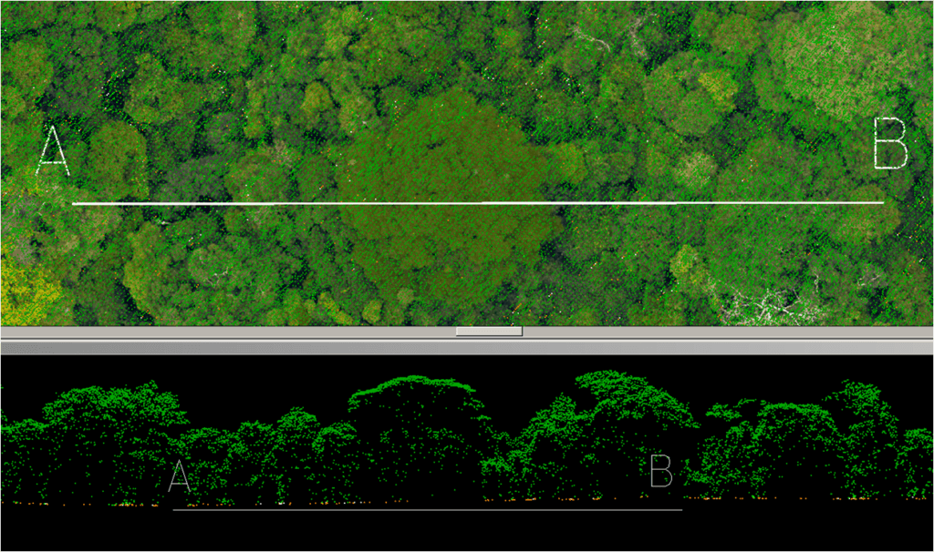 hi-tech rainforest map brings climate and conservation efforts into sharp relief