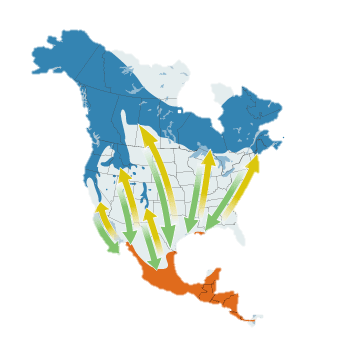 WIWA current map