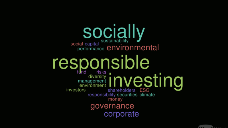 ​socially responsible investing case study dataset