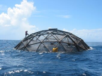 Diver inspects aquaculture vessel for farming cobia off the coast of Puerto Rico.