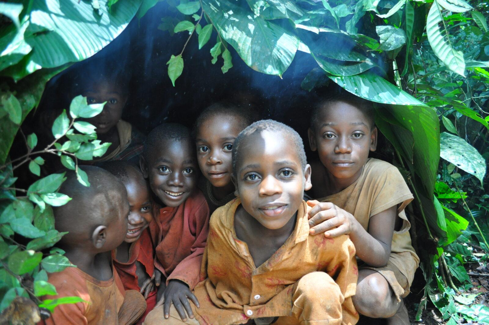 ucla congo basin institute receives $1 million from pritzker family foundation