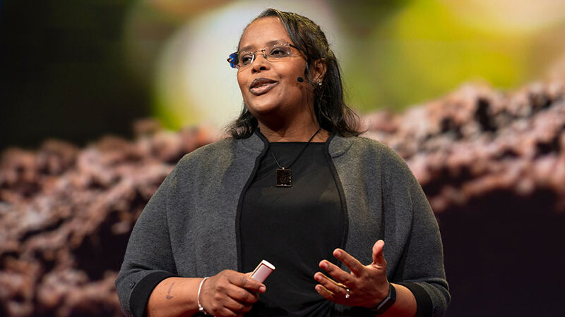 Professor Asmeret Asefaw Berhe giving a TED Talk