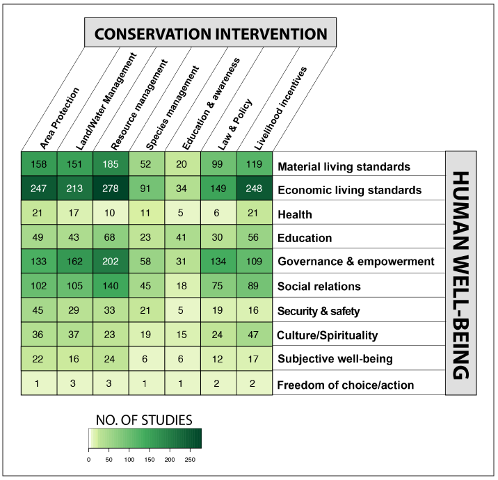 """Fig 1. Researchers created an """"evidence map"""" that allows users to click on a cell to find out more about studies that investigate the relationship between particular conservation policies and measures of human well-being."""