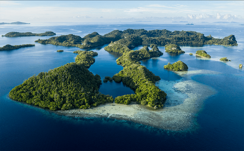 paul barber: what is the coral triangle?