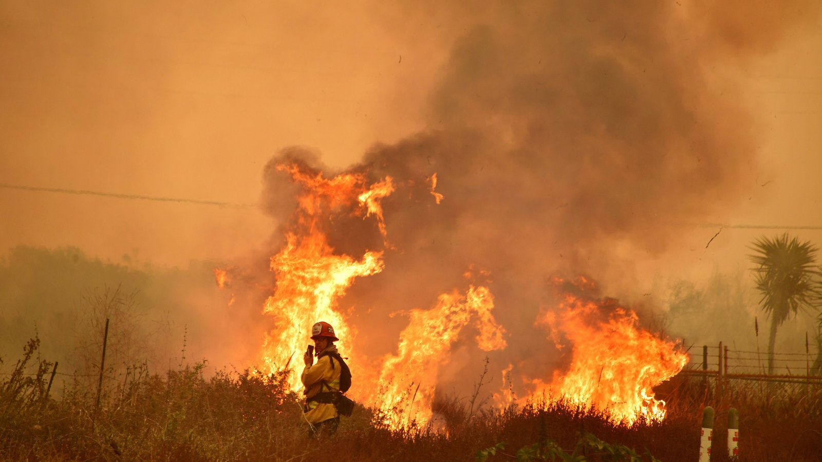 npr: why fires are becoming california's new reality