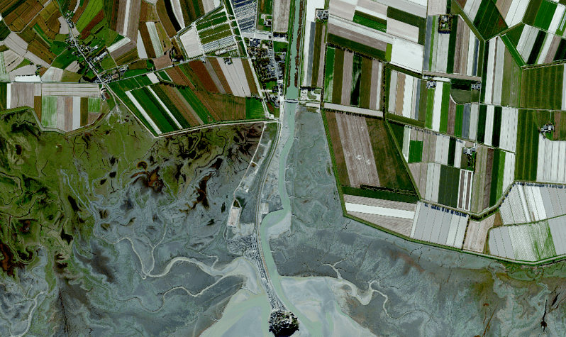 satellite images for vivid environmental stories