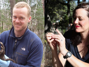 from big cats to delicate butterflies, the la kretz center's newest researchers are surveying california wildlife