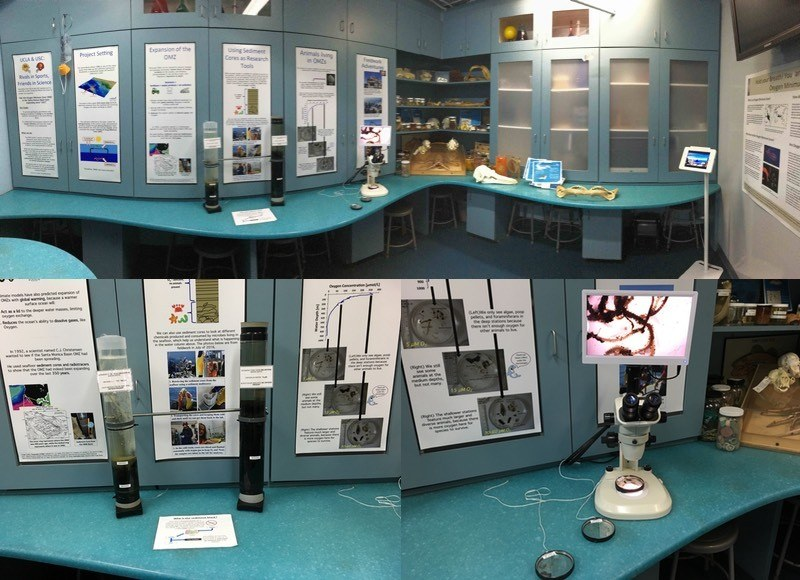 public exhibit on the oxygen minimum zone in the santa monica basin