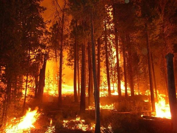 one planet: how is climate change fueling california fires?