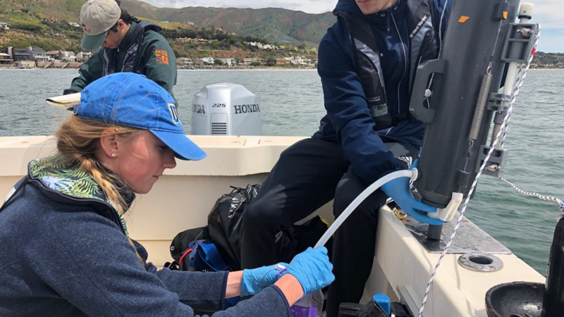 ocean acidification in santa monica bay
