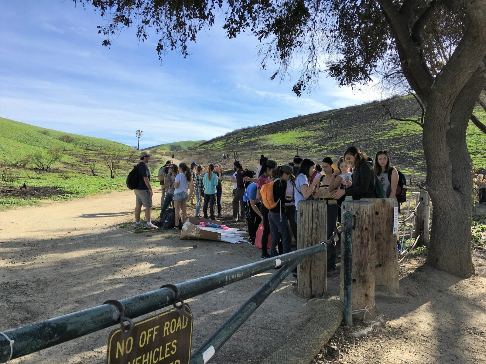 bouncing back: enabling our student workforce to document post-fire ecological recovery of the santa monica mountains