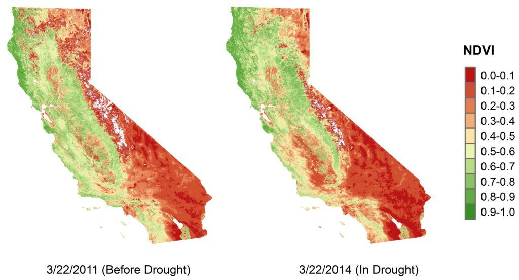 california 'browning' more in the south during droughts