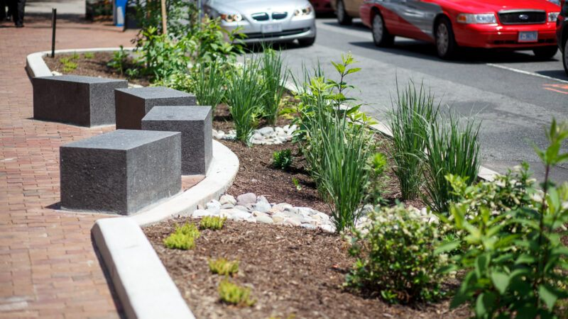 not just homeowners — businesses need sustainable landscaping too
