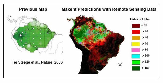 Potential geographic distribution of tree diversity in the Amazon basin