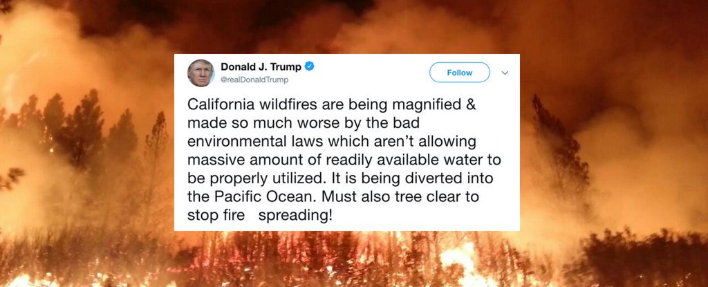 we asked an expert about trump's baffling wildfire tweets. here's what they had to say