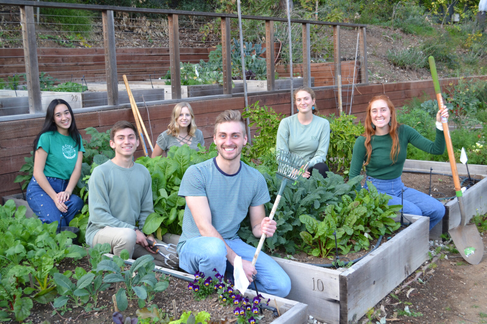 community garden glory