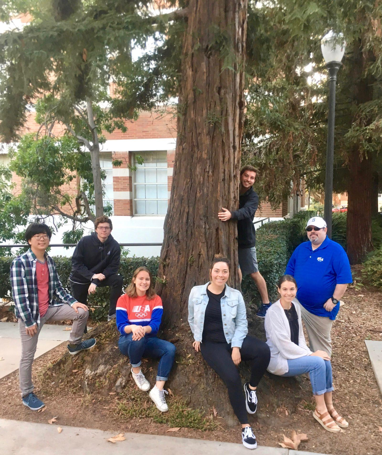native landscaping team photo stream: spring 2018