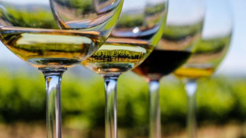 do eco-friendly wines taste better?