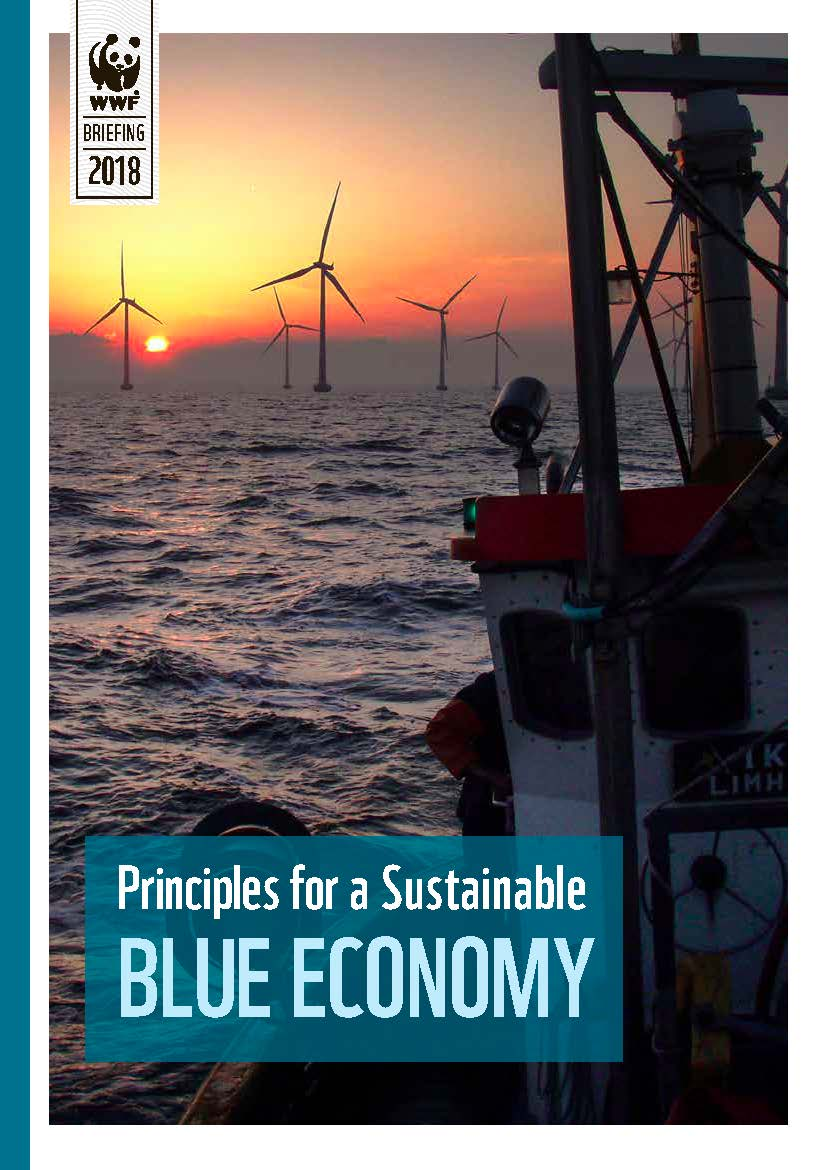 Principles for a Sustainable Blue Economy